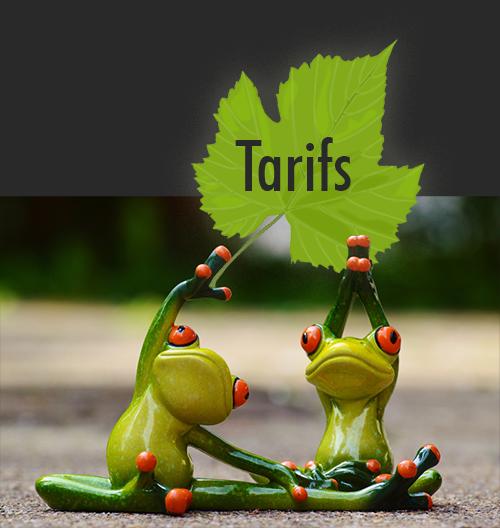 kermit_tarif
